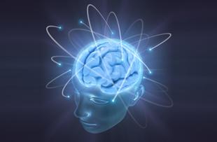 Safe-brain